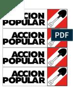 accion popular.docx