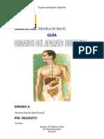 09 Organos Del Aparato Digestivo Afs-Ans1100