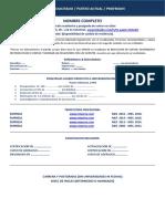 Formato de CV para Directivos