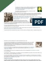 91765688-Historia-de-los-opiaceos.doc