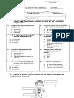 evaluacion 2do basico, huesos y organos..docx