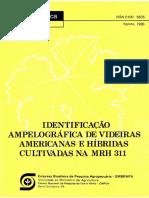 Identificacaoampelografica.pdf
