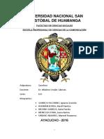 MATRIMONIO ANDINOoficial.docx