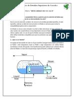 Inv. previa 1.docx