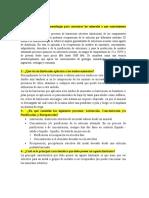 Cuestionario #2 de Extractiva - Mariana Avila