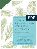 CAPÍTULO-18-TRADUCCION.docx