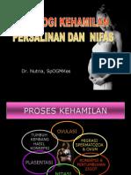 Fisiologi Kehamilan (dr Nutria).ppt