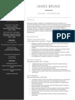 bruno resume  2019  website version
