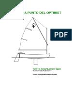 puesta-a-punto-2.pdf