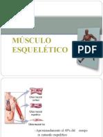Contracciondelmusculoesqueletico 131022171136 Phpapp01 Convertido