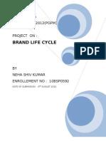 Brand Life Cycle Final