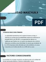 seminario-infertilidad (2)