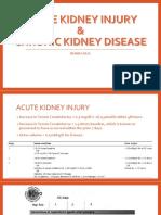 Acute Kidney Injury (1).pptx