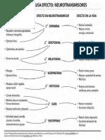 Lista de Neurotransmisores
