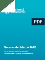 Normas del marco SAFE