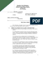 edited v.3 pretrial-brief.docx