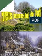 Povestea_iepurasului_de_Pasti.pps