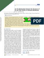 peptide_memb_dpd.pdf