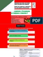 Procesamiento y Presentacion Del Antigeno a Los Linfocitos T