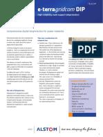 DIP_brochure.pdf