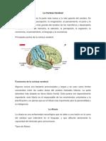 foro academico 2.docx