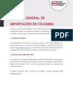 Guía Práctica Proceso de Importación de Bienes.pdf