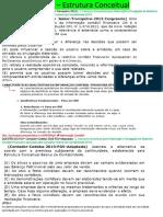 1. Estrutura Conceitual para Elaboração .docx