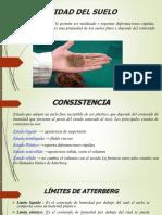 plasticidad de los suelos.pptx
