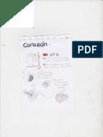 Nota Corazon