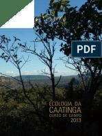 livro ECCA 2013.pdf