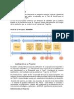 como elaborar unproyecto segun la pnud.docx