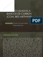 Metano Ligados a Bancos de Carbón (Coal Bed Methane)
