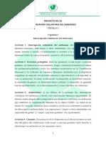 Proyecto Interrupción Voluntaria del Embaraszo Plenaria 2019