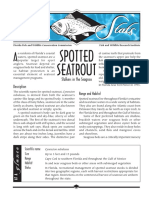 Sea Stats - Spotted Seatrout