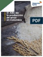 Cultivo Arroz en Colombia