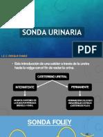 sondaurinaria.pptx