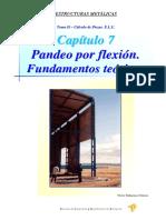 07 Pandeo.pdf