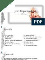 Deterioro Cognitivo Leve en El Adulto Mayor (Presentación Editable)