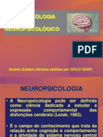 1-Introdução à Neuropsicologia-módulo - i - 2007