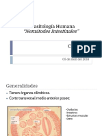 Clase 2 Parasitologia