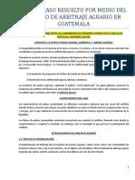 315848456-Caso-Concreto-de-Arbitraje-Agrario.docx