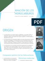 CONTAMINACIÓN DE LOS HIDROCARBUROS.pptx