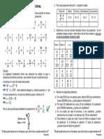 taller_razones_y_proporciones.pdf