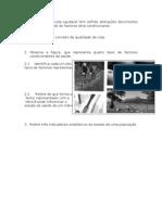FT1Saude e Sistema Reprodutor