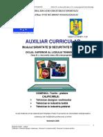 Auxiliar Sanatate si securitate in munca.docx