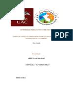 tesiis de riam222.doc