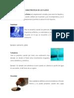 CARACTERISTICAS DE LOS FLUIDOS.docx
