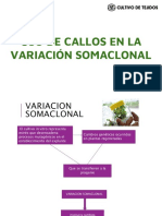 VARIACIÓN SOMACLONAL.pdf