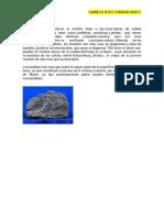 T--Basaltos Toleiticos.docx