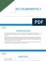 2 Actividad Colaborativa (2)